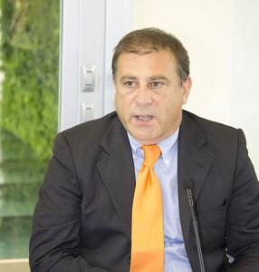 Gianluca Guerrini   Innovation manager Italcementi per i materiali cementizi fotocatalitici