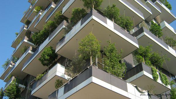 Dettaglio delle profonde terrazze.