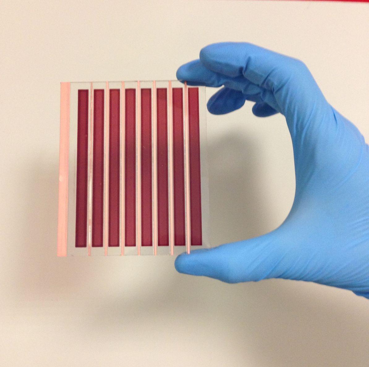 Il primo prototipo di pannello solare che usa grafene per ridurre i costi mantenendo rese energetiche confrontabili con la tecnologia tradizionale, basata sul platino.