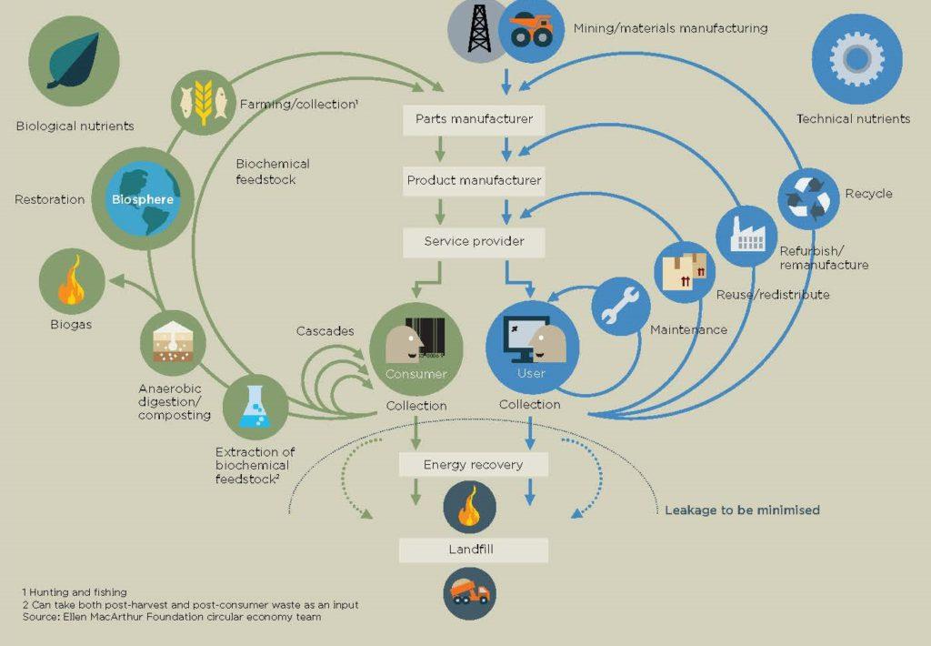 «L'Economia circolare: un sistema industriale rigenerato grazie alla progettazione».